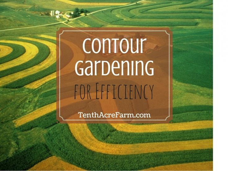 Contour gardening is a way to use the land's contours to maximize the use of available resources for abundant harvest yields. Here's what contour gardening is and how you can pull it off.
