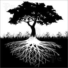 illustration of tree with roots - Google Search