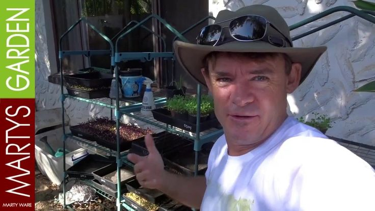 Micro Farm Tour at Martys Garden Australia