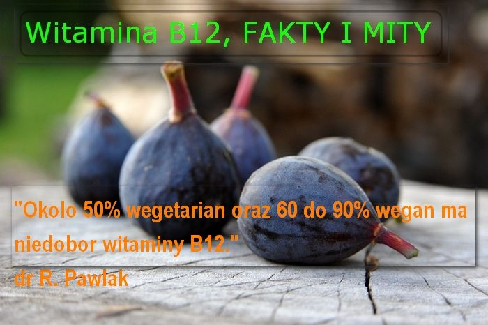 witamina b12, fakty i mity