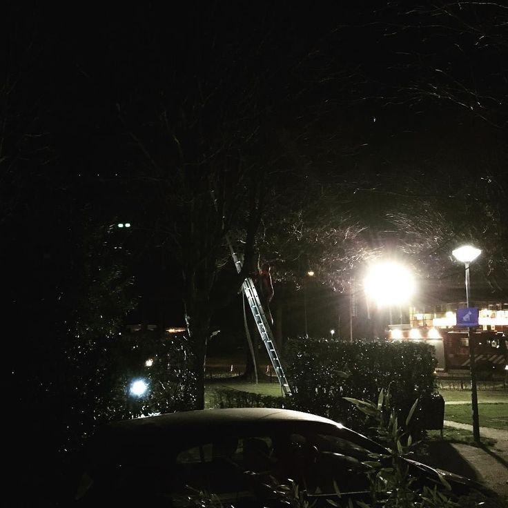 En dan besluit een of andere flapdrol waarschijnlijk zonder kinderen die naar bed moeten dat 20.00 uur een geschikte tijd is om in een woonwijk een boom om te gaan zagen. Zonder aankondiging. En daar dan ook voor een elftal brandweermannen een oefening van te maken. Kom op gemeente Wijchen jullie zijn beter dan dat. #wijchen #kettingzaag #herrie #helmkruidstraat #ongelofelijk #fail