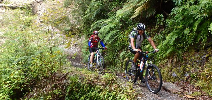 Cycle with like-minded adventurers on the South Island Mountain Bike trip