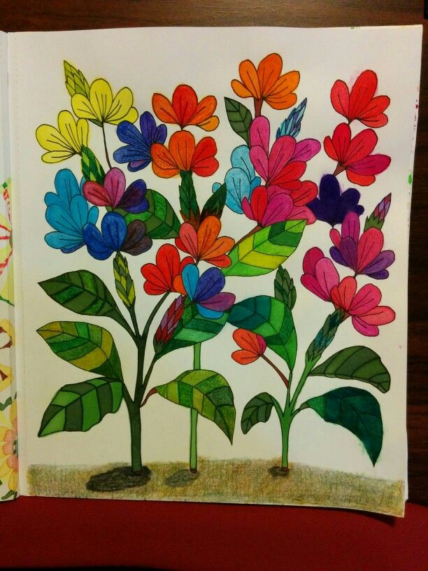 Page From Just Add Color Botanicals Coloring Book Im Using Staedtler