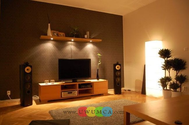 Living Room:Decorating Brazilian Living Room And Lighting With Sofa Furniture Coffee Table Chairs Rug Design For Small Spaces TV Wall Units 40 In Light Brown Wood Color Luxury Living Room Decor of an Art Collector by Gisele Taranto