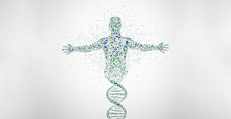 Source of cells used to generate new tissue may be important to future of personalized medicine | PRIME Journal