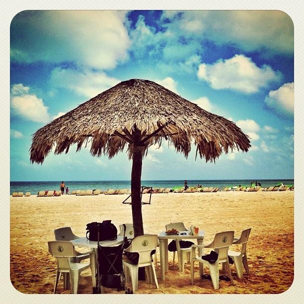 FRIDAY on Cozumel... so many many things to do!