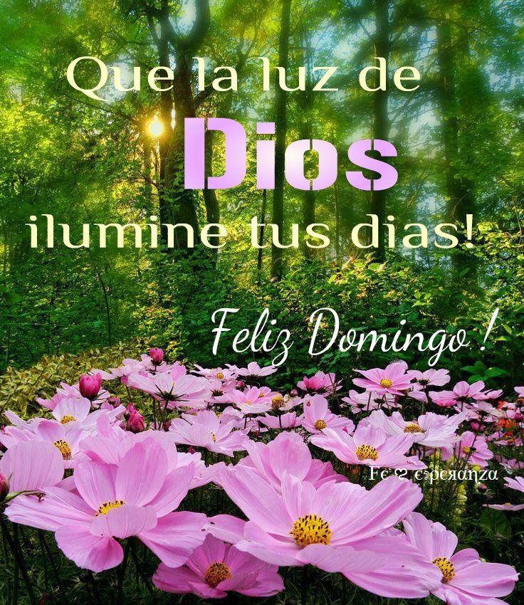 Que la luz de Dios ilumine tus dias .