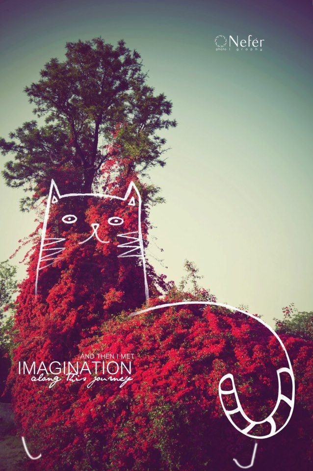 And then i met IMAGINATION along this journey ♥ | la fotografía |