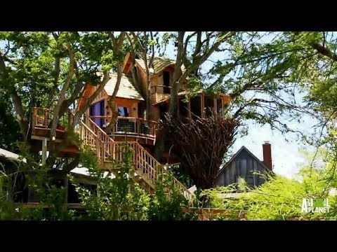 Behind The Build: Bird Nest Tree | Treehouse Masters