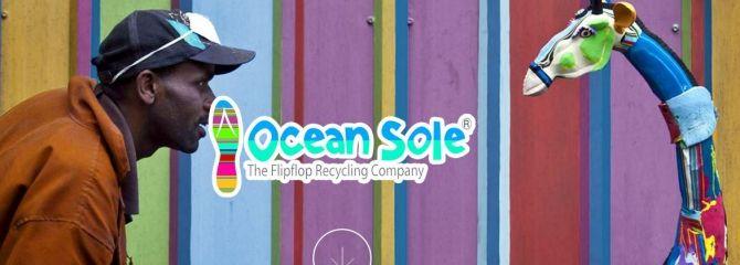 Ocean Sole: kleurrijke dieren van oude teenslippers - De Betere Wereld