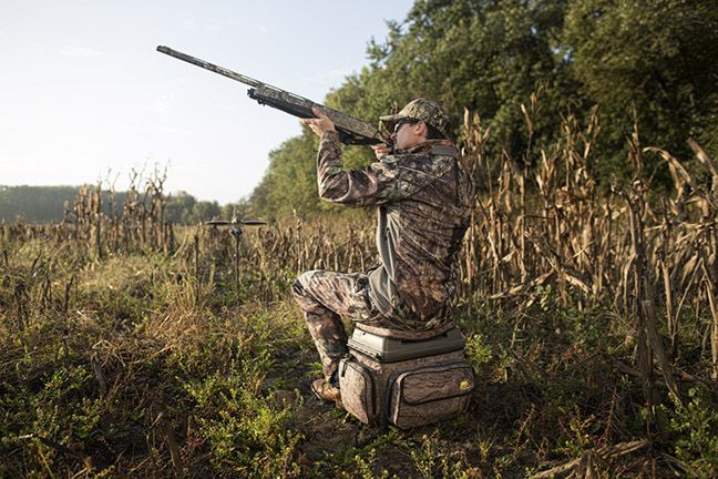 Dove hunting isn't complicated, so don't make it that way!