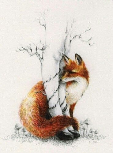 Fox drawing - love the idea with the tree | Tattoo ...