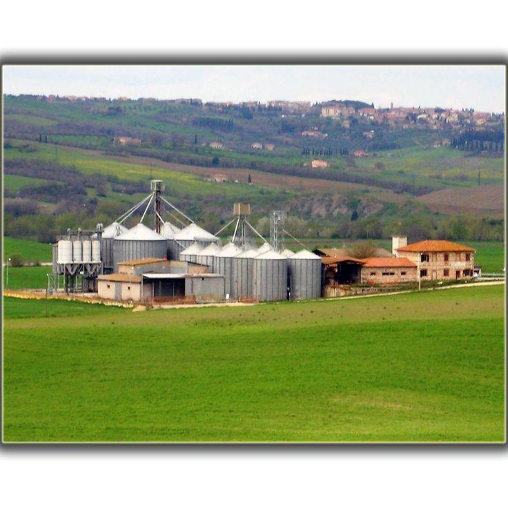 PUNTO VENDITA - AGENZIA DI GALLINA S. ISABELLA Via Cassia, 44 - 53023 - Castiglion D'Orcia - Siena Tel:0577 230.173 - Fax:0577 230.473 E-mail: age_gallina@capsi.it SERVIZI: - Vendita e distribuzione prodotti per l'agricoltura - Centro stoccaggio cereali (Norme HACCP) - Impianto dotato di strumentazione per effettuare analisi proteine Ccreali - Centro ritiro girasole, mais e sorgo - Fitofarmacia - Oasi ecologica per la raccolta dei contenitori vuoti di fitofarmaci CONTATTI: BIANCOLINI ROSANNA
