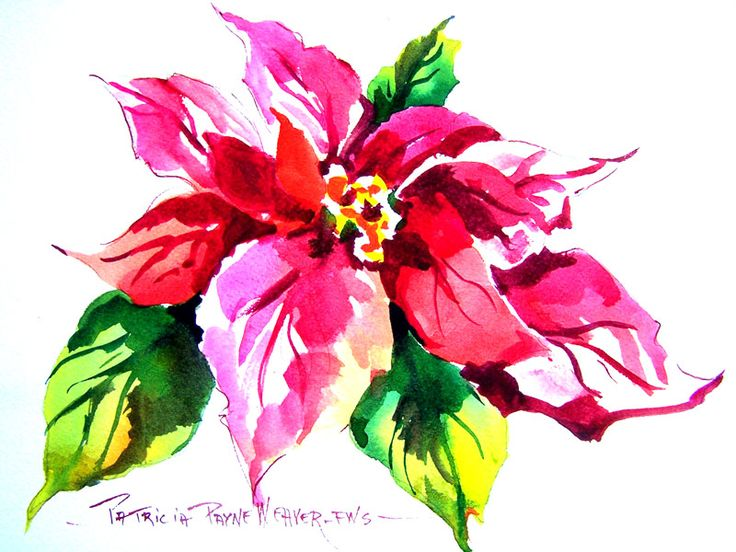 Watercolor christmas poinsettia pinturas navide as for Pinturas navidenas