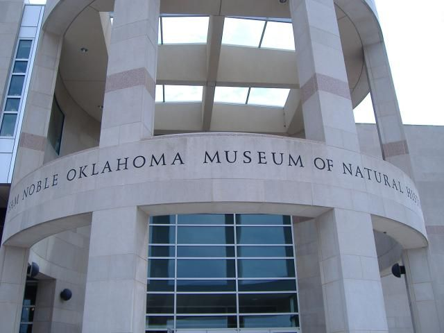 Take Your Kids to These Places in the Oklahoma City Metro Area: Sam Noble Oklahoma Museum of Natural History