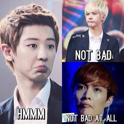 Laughing harder than I should. So it's Chanyeol. Then Sehun... And then I saw Lay! I think Lay's is a judging fish