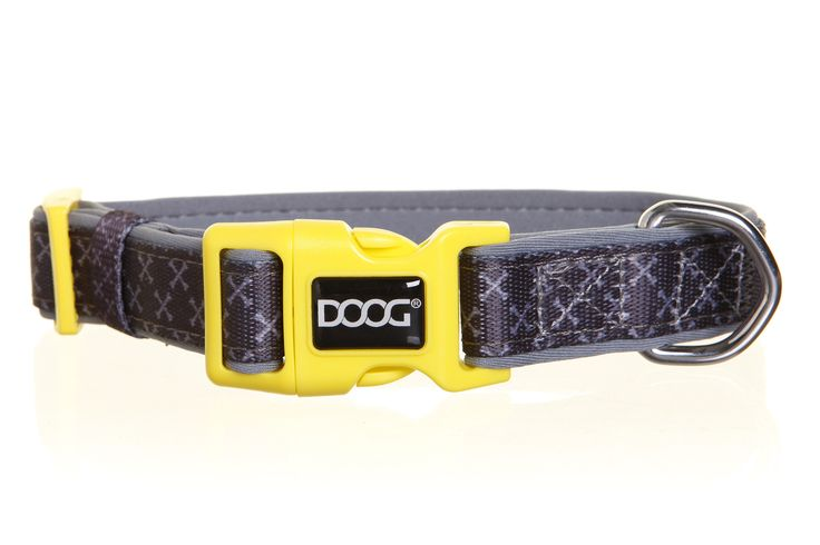 DOOG Collar - Odie *NEW*