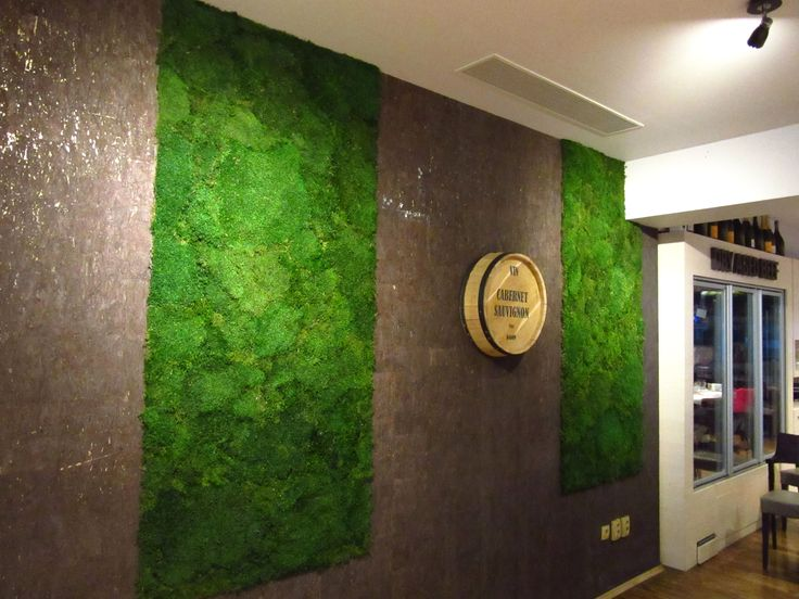 Green Walls @ OSHO Primaverii