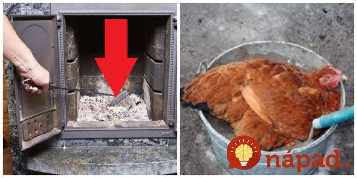Rada pre všetkých, ktorí kúria drevom: Odložte si trochu popola a nasypte ho do jazierka alebo tam, kde žijú domáce zvieratká, nebudete ľutovať!