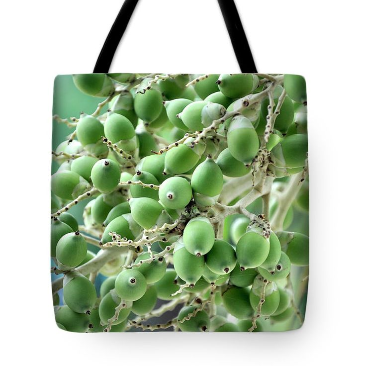 Tropical Tote Bag featuring the photograph Areca Nut. by Nhi Ho Thi Xuan