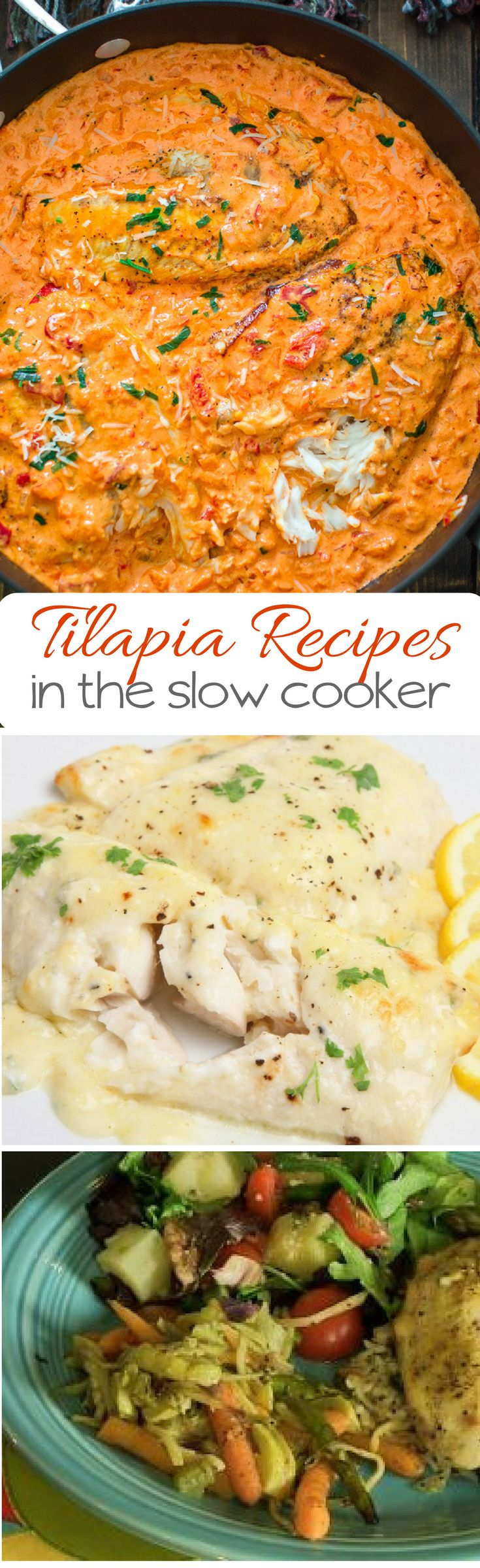 These Easy Crockpot Tilapia Recipes fit the healthy eating bill, but the ease of a slow cooker.    #tilapiarecipe #crockpotrecipes #healthyrecipes