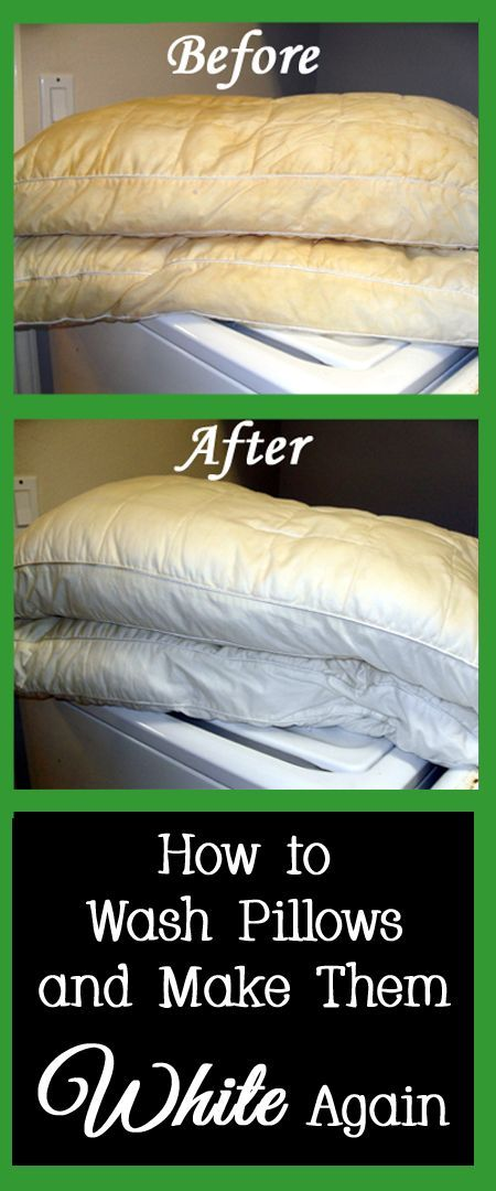 When was the last time you washed your bed pillows?  If it has been more than 6 months, your pillows are overdue for a washing.   Since most people sweat while sleeping, their pillows and pillow cases can turn yellow just like under shirts.  In order to get your bed pillows back to white, try the following solutions:
