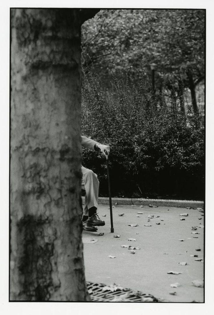 Samuel Beckett, by François-Marie Banier