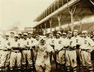 chicago cubs world series win - Visicom Yahoo Image Search Results