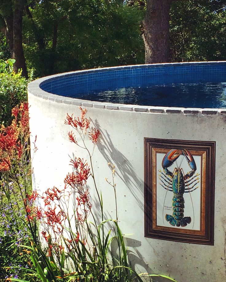 Our plunge pool has just received a makeover courtesy of our new Stuck Up Art range. Stick it wherever, move it whenever, indoors & outdoors. This one is called the Escaping Lobster. Looks pretty good!