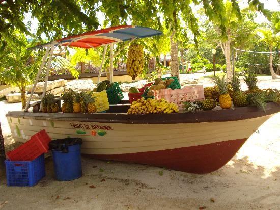 Dreams La Romana: food boat on the beach