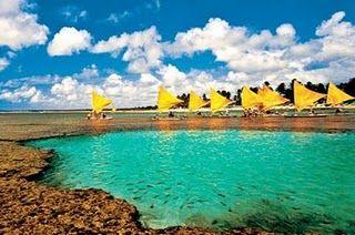 Porto de Galinhas, Pernambuco, Brazil. Unfortunately the reef is dead from people walking on it. Such a shame.