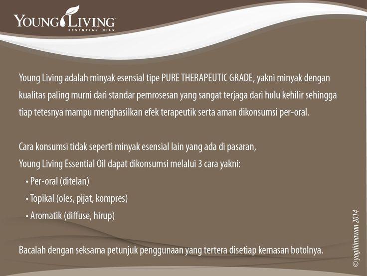 Apa itu Minyak Esensial Young Living?  #katalogEO  Young Living Company of Angels Indonesia