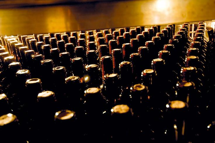 TASTE THE WINE. Il vino Pecorino ai Salotti del Gusto dell'Alta Badia. Grazie all'Azienda VALORI