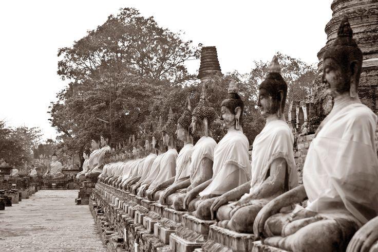 Gallery of Buddhas