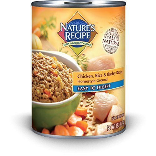 Nature S Recipe Easy To Digest Dry Dog Food Chicken Rice