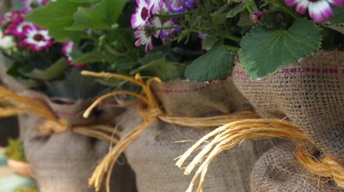 Besoin d'acheter un pot de fleurs pour votre maison ou appartement ?Voici une super idée pour avoir des pots de fleurs pas chers, aussi bien pour l'extérieur que pour l'intérieur.