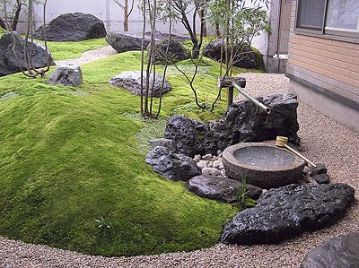 Garden overgrown with moss. 苔庭