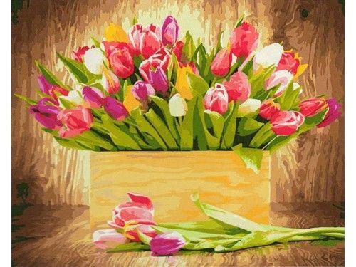 Картина по номерам «Тюльпаны»