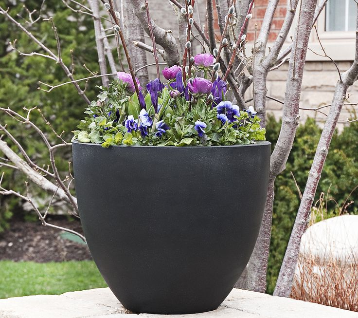 25 best garden center hedberg supply stillwater images on pinterest spring planter ideas mightylinksfo