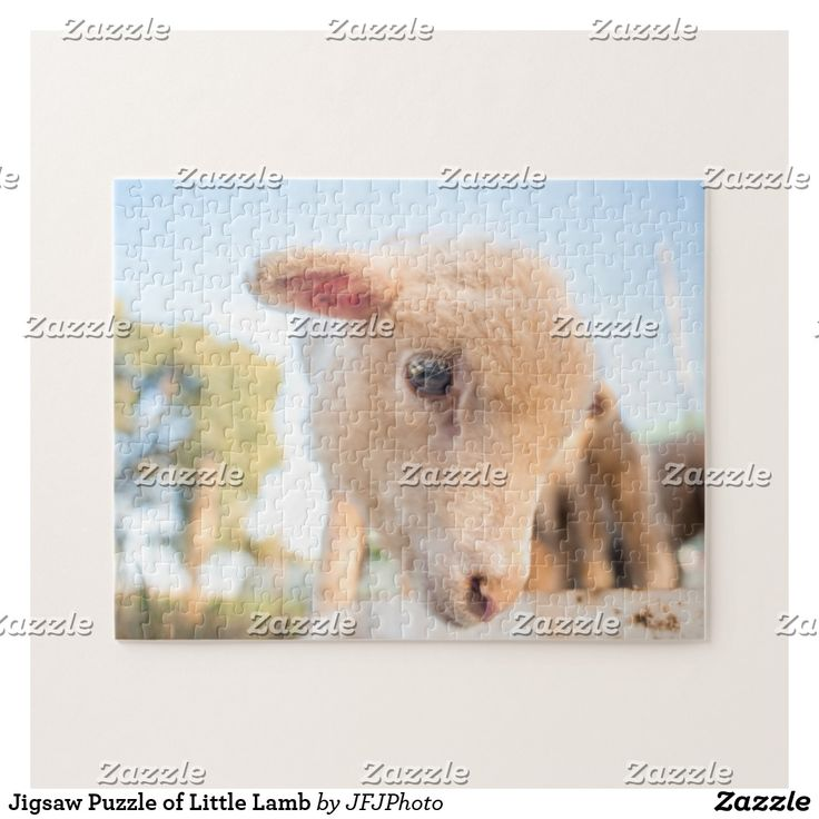 Jigsaw Puzzle of Little Lamb