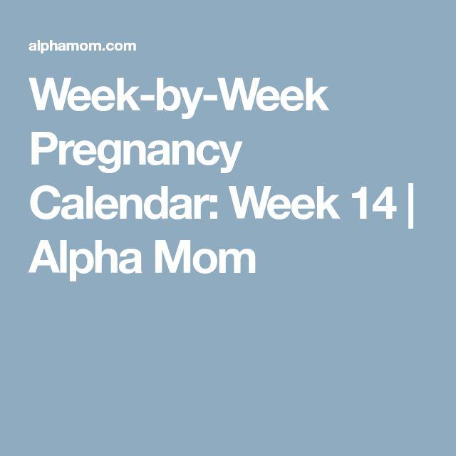 Week-by-Week Pregnancy Calendar: Week 14 | Alpha Mom