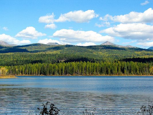 Race info for the 2015 Snow Joke Half Marathon in Seeley Lake, Montana, with a course map, elevation profile, runner reviews, registration & more.