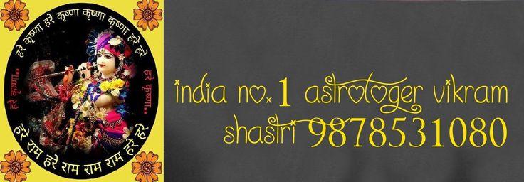 No.1 Love Marriage Specialist Astrologer in delhi,mumbai,chennai,india +919878531080