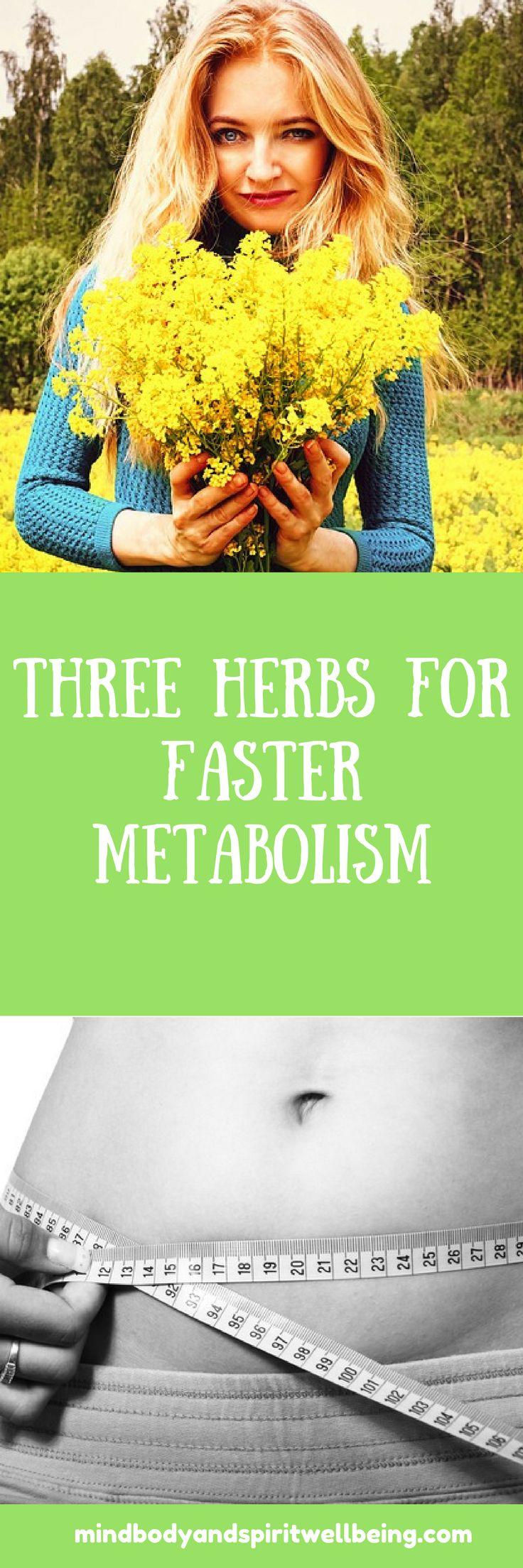fast metabolism, metabolism booster, herbs for metabolism, detox, cleanse, liver detox, dandelion, st. john's wort, stinging nettle, herbal tea, detoxing tea, weight loss, slimming tea