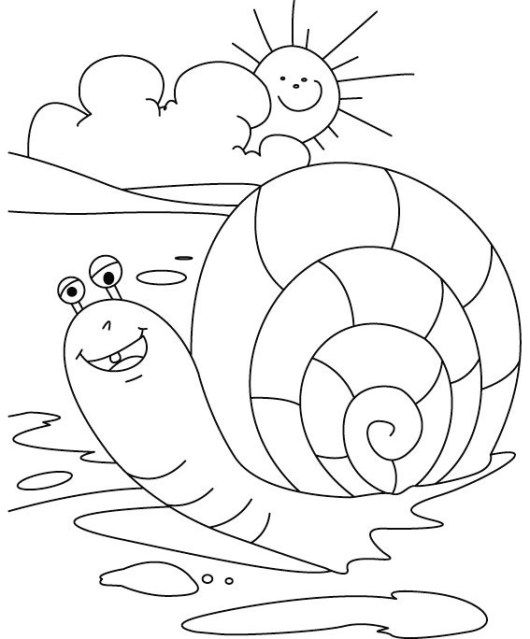 82 best animal coloring activity page images on Pinterest ...