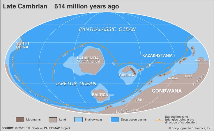 Distribution of landmasses, mountainous regions, shallow seas, and deep ocean basins during the late Cambrian Period. Included in the paleogeographic reconstruction are the locations of the interval's subduction zones.