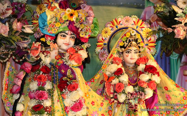To view KIshore Kishori Close Up Wallpaper of ISKCON Chicago in difference sizes visit - http://harekrishnawallpapers.com/sri-sri-kishore-kishori-close-up-iskcon-chicago-wallpaper-003/