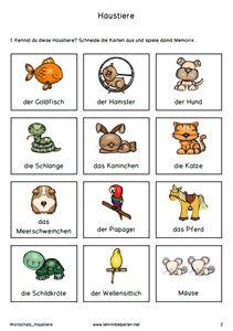 Haustiere: Hunde, Katzen, Vögel, Nager. Goldfisch, Schildkröte und Pferd
