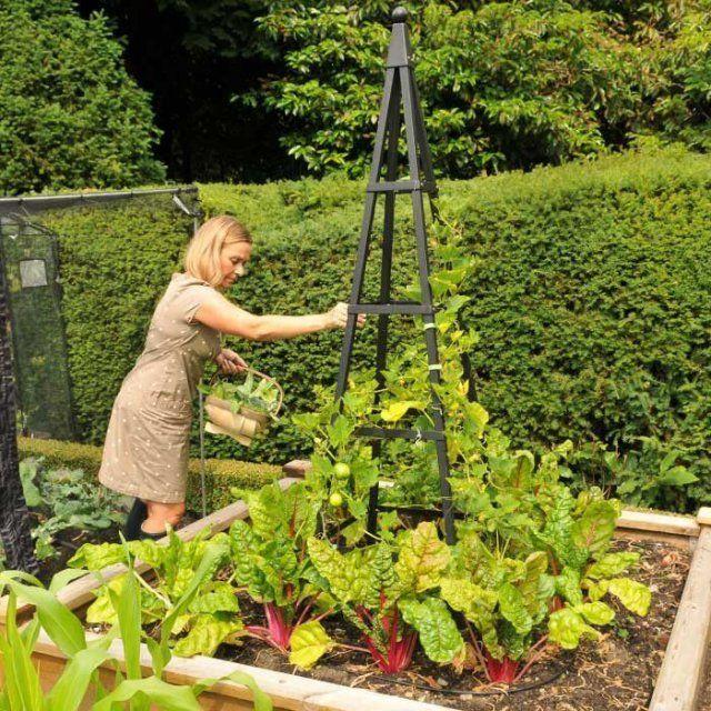Пирамидальная <b>опора для растений</b>   дачные хитрости   <b>Garden</b> ...
