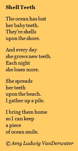The Poem Farm: Shell Teeth - The Private Eye | growing poetry and lessons for all ages...  This poem could be used to teach children to write from drawing or to teach children about metaphor - mini lessons are always included at The Poem Farm, Amy Ludwig VanDerwater's ad-free, searchable blog full of hundreds of poems, poem mini lessons, and poetry ideas for home and classroom - www.poemfarm.amylv.com